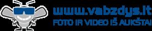 logo_example1_melynas_permatomas-500x104